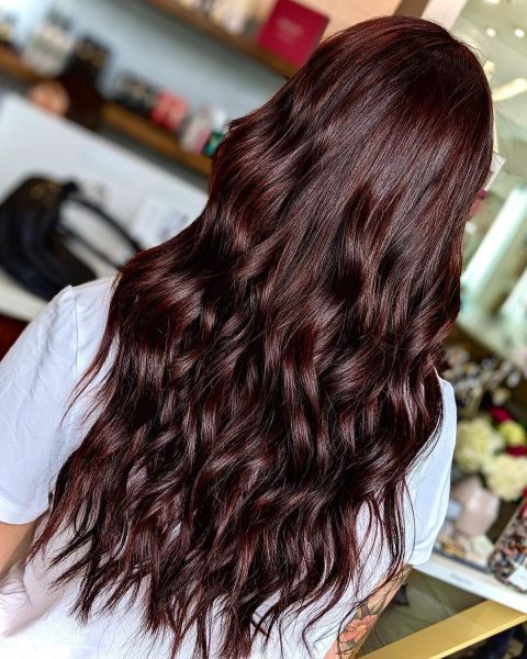 Rich Shiny Hair Color