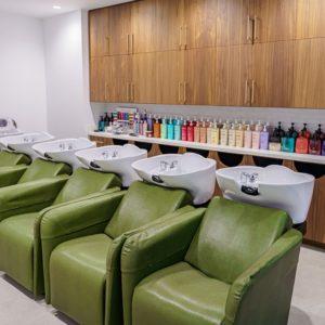 Shampoo and Treatment Area